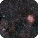 Rosette Nebula and Cone Nebula,                                Ray Heinle