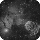 IC443 The Jellyfish and Environs in Ha,                                Michael Feigenbaum