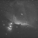 IC 434  Nébuleuse de la Tête de cheval dans Orion décembre 2008,                                Frédéric Tapissier