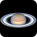 Saturn and the Seeliger Effect during the 2019 Opposition,                                David Duarte