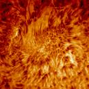 Sun,                                Goodwin