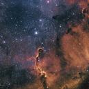 IC 1396 Elephant Trunk nebula,                                RichardBoudreau