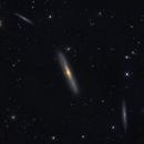 NGC 4216 and friends, Galaxies in Vir,                                GJL