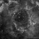 Rosetta in Ha,                                FrancescoTallarico