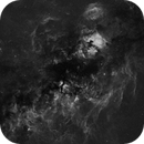 Cygnus mosaic 20x135mm,                                Marc Ricard