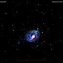 ngc2336 galssia  in  camelopardalis                                     distanza 20 milioni   A.L.,                                Carlo Colombo