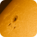The new sunspot today,                                Uwe Meiling