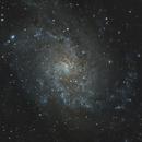 M33 Trianglum Galaxy,                                Ahmet Kale