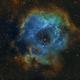 Rosette Nebula/NGC 2244 in HOO and SHO,                                John Kroon