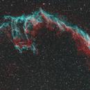 Eastern Veil Nebula (NGC 6992),                                Phillip