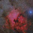 Wide field Nebulas North America and Pelican,                                Alberto Pisabarro