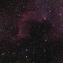 NGC7000 - NA Nebula,                                John E.