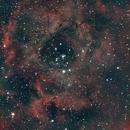 Rosette Nebula V1,                                Gowri Visweswaran