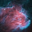 Ic2944 Running Chicken Nebula,                                Kevin Parker