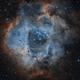 Rosette Nebula HOO,                                Mirko M