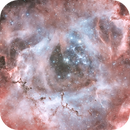 Rosette Nebula (Ha-RGB) combining ASI1600mmp and Pentax K3ii data,                                pete_xl