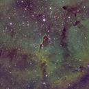 IC 1396A - Elephant's Trunk SHO,                                John Hosen