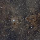 Iris Nebula Wide,                                Jeffrey Horne