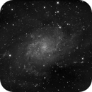 M33 Triangulum - Luminance,                                Salvopa