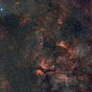 Cygnus Eastern part,                                jolind