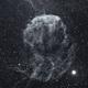 IC443 Jellyfish Nebula in HA,                                Temu Nana