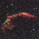 Eastern Veil Nebula - NGC 6995,                                Giuliano Calderaro
