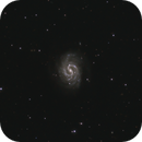 NGC 4535, The Lost Galaxy of Copeland,                                Steven Bellavia