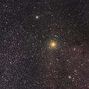 The Garnet Star,                                Will Czaja