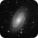 The Bode Galaxy,                                Vencislav Krumov