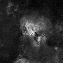 The Swan Nebula (M17) in H-Alpha,                                David Nguyen