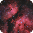 """IC 1318 """"The Butterfly"""",                                Hunter Harling"""
