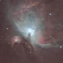 M42,                                Brian Ritchie