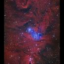 NGC2264 Cone Nebula and Christmas Tree Cluster HaGB,                                Göran Nilsson