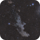 Witch Head Nebula - IC2118,                                Gideon Golan