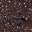 Elephant Trunk Nebula- High Integration Time,                                AwesomeAstro