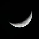 Luna,                                AlbertNewland