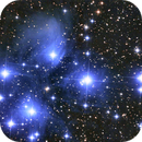 The Pleyades,                                Joanot