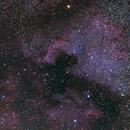 NGC7000,                                Paolo Manicardi
