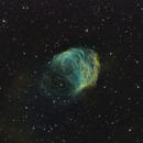 Abell 21, the Medusa Nebula in SHO,                                Frank Zoltowski