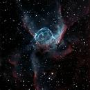 NGC 2359 - Thor's Helmet,                                Greg Allegretti