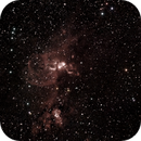Nebulosa Estatua da Liberdade,                                Wagner