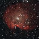 NGC2175,                                Daniele Viarani