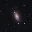 M63 (Sunflower Galaxy),                                ASTROtrezzi.it
