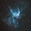 NGC 2359 Thor's Helmet,                                Larry S