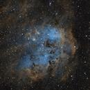 IC 410 Tadpoles Nebula,                                Roberto Marinoni