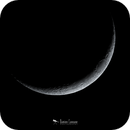 8% Waxing Crescent Moon,                                Damien Cannane