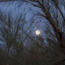 Super Moon - New Years Day 1/1/2018,                                Jim Matzger