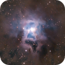 NGC7023 - Iris Nebula,                                Almos Balasi