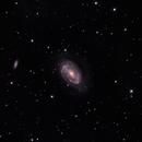 NGC 4725,                                Randy Roy
