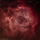 Rosette Nebula,                                Coriorda